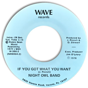 Night Owl Band, Wave 366